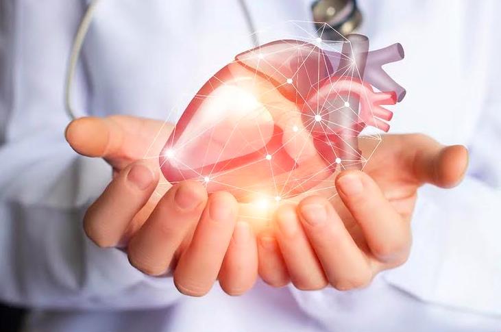 Mortes por doenças cardiovasculares em domicílio aumentaram mais de 30% durante a pandemia